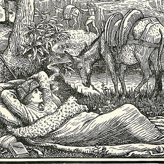 Travels with a donkey in the cevennes   frontispiece